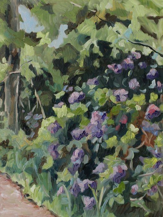 Bloemen bij het pad